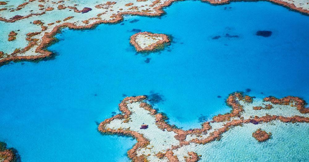 Cairns - Korallen aus der Luft