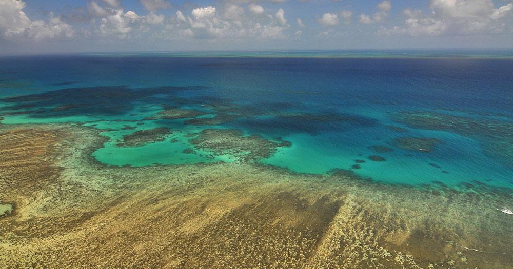 Cairns - Great Barrier Reef Luftaufnahme