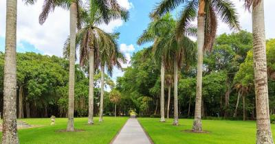 Fairchild Tropical Botanic Garden - Weg durch den Park