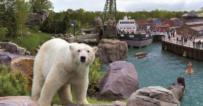 Erlebnis-Zoo Hannover - Yukon Bayr