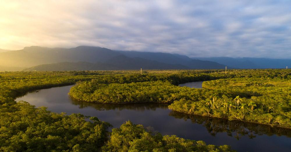 Amazonas / Amazonas Regenwald in Brasilien