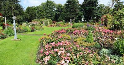 Westfalenpark - wunderschöne Blumen im Westfalenpark