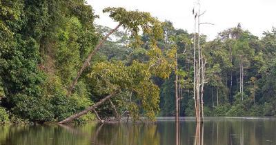 Kinabalu - der Ochsenbogensee in Borneo