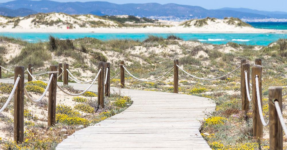 Formentera - Weg zum weissen Sandstrand