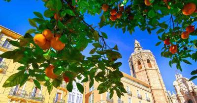Valencia Die drittgrößte Metropole Spaniens