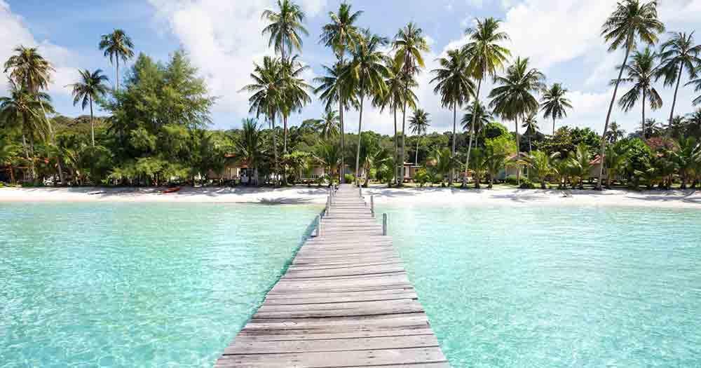 Seychellen - Ausblick auf das Meer und die Palmen