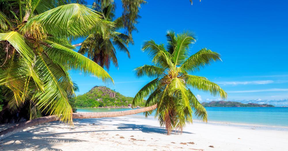 Bahamas - Blick auf den Strand