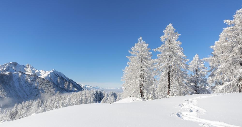 Morgins - Blick auf die Winterlandschaft