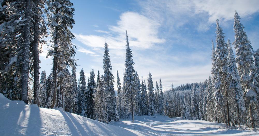Sun Peaks Resort - Blick auf verschneite Berge