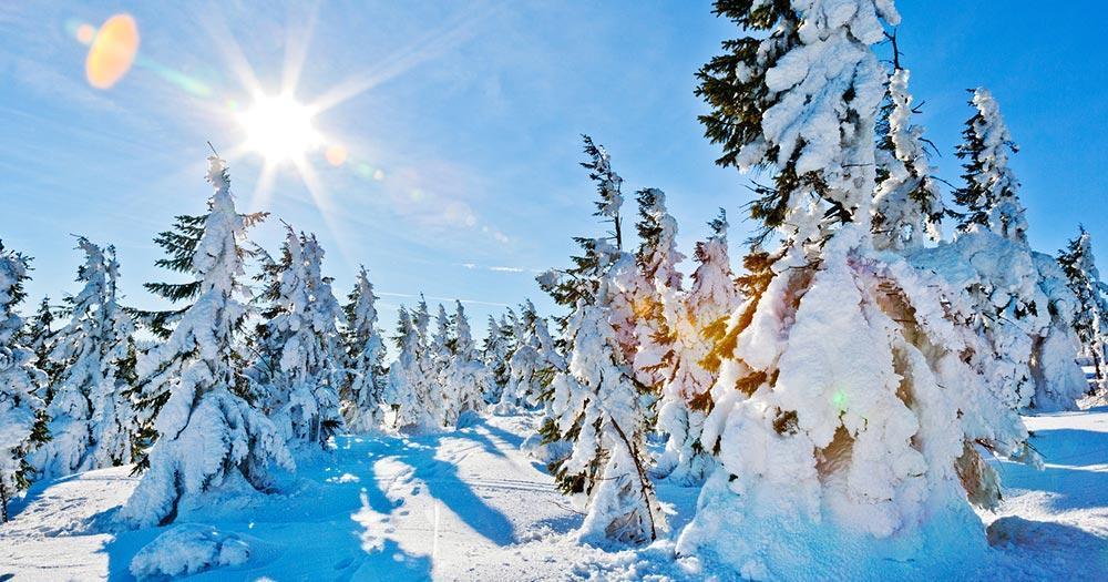 Pec pod Snezkou - Traumhafte Winterlandschaften