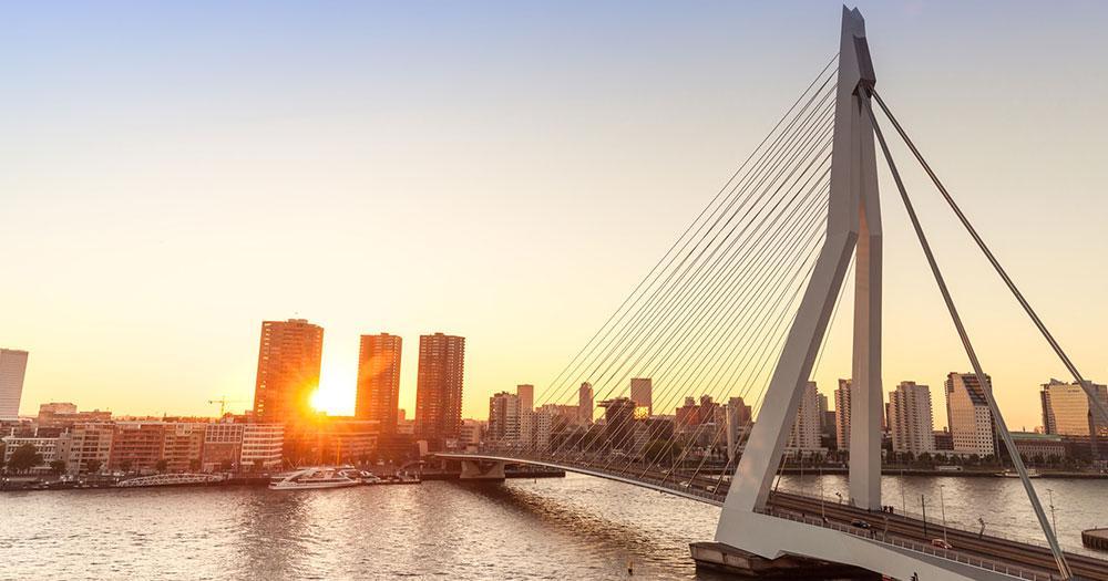Rotterdam - Erasmusbrücke im Gegenlicht