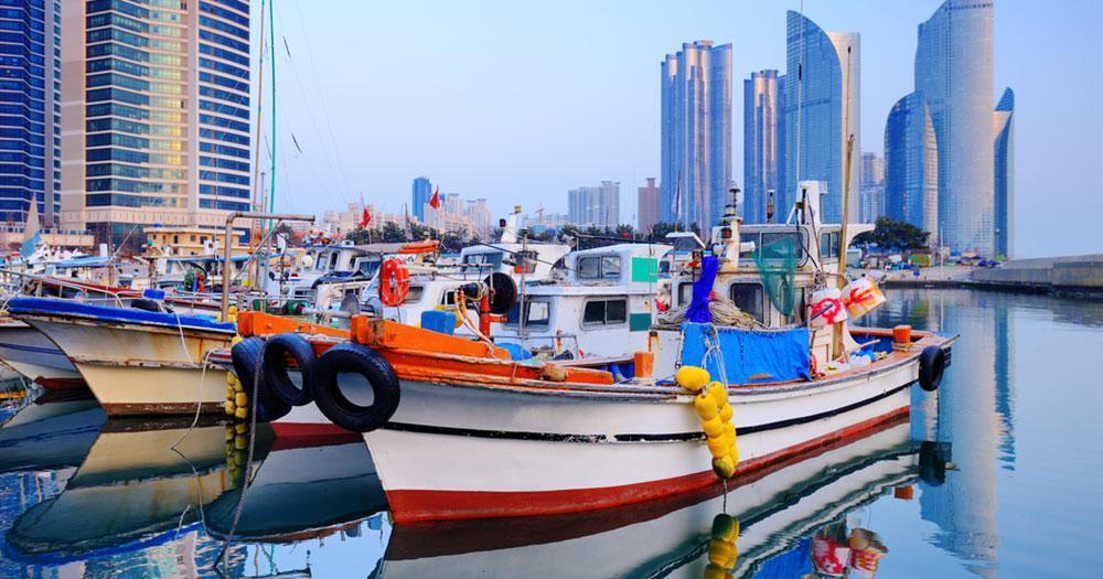 Busan - Hafen von Busan