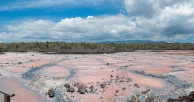 Galapagosinseln - Landschaft von Santa Cruz