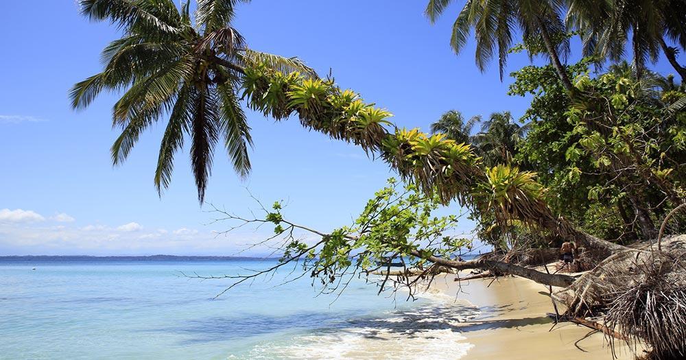 Bocas del Toro - Tropical Beach of Zapatilla