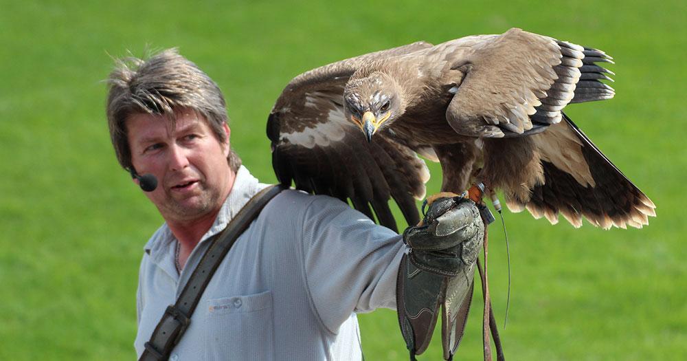 Bayern-Park - Greifvogelflugschau