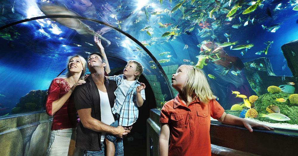 Legoland - Aquarium