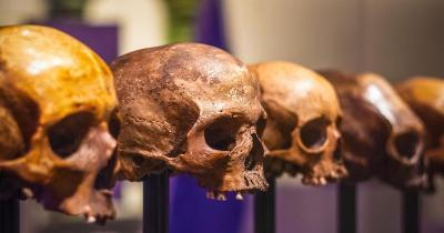 British Museum - Schädel