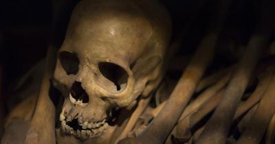 Museo Egizio - Totenschädel