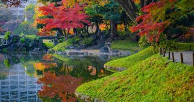 Rikugi-Park - Herbstbäume an einem See