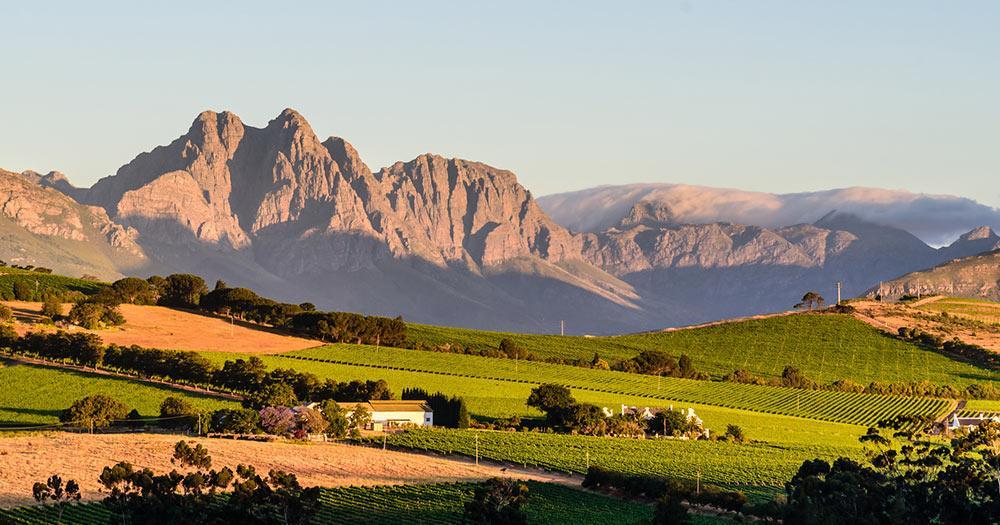 Südafrika - Winelands