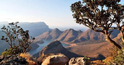 Blyde River Canyon - Panorama mit Baum im Vordergrund